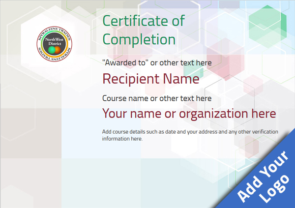 certificate-of-completion-template-award-modern-style-5-default-blank Image
