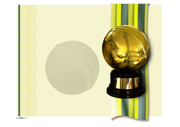 free cricket certifcates and templates printable Image