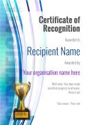 modern1-default_recognition-trophy Image
