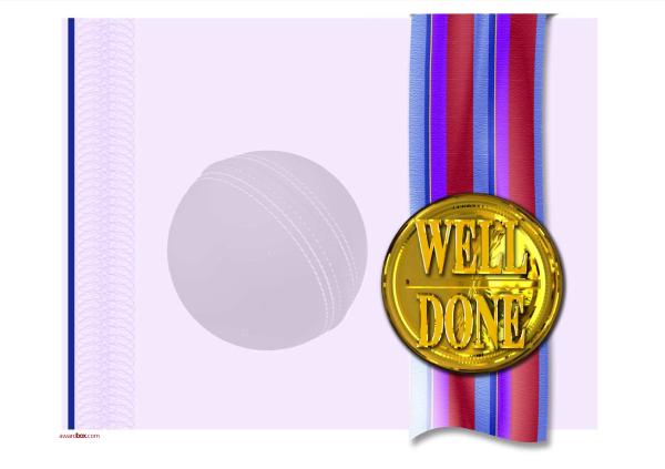 modern4-default_cricketball-welldone-medal Image